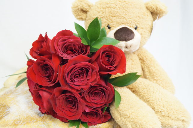 1 dozen red roses ftd with bear and vase f724