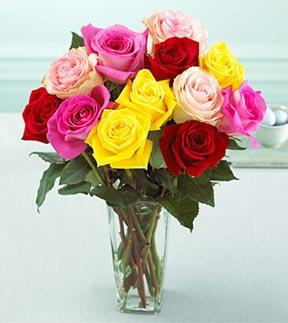 1 Dozen Medium Stem Mixed Colored Roses With Vase F152