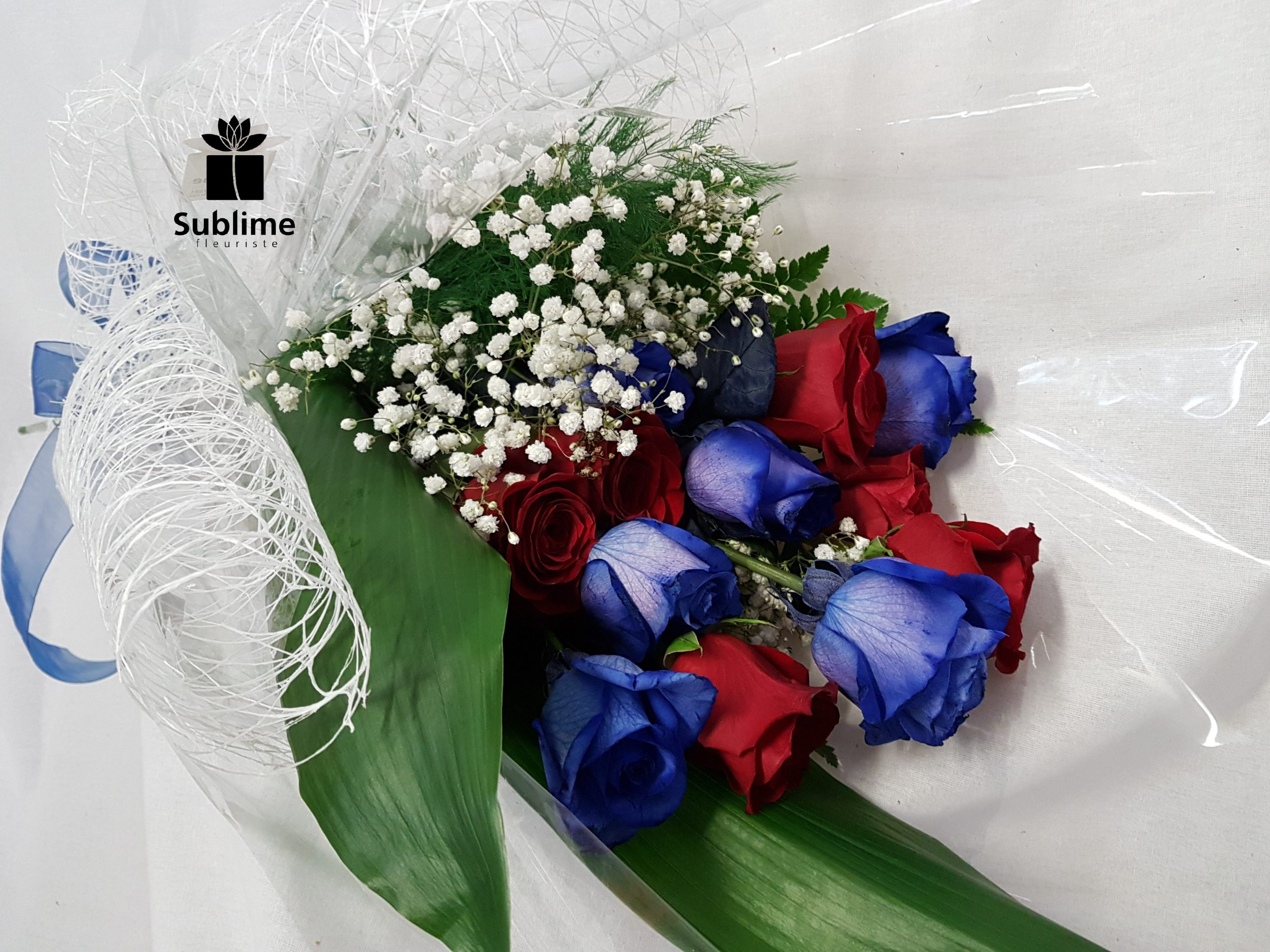 SUBFC-029 12 roses bleu et rouge